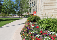 Summer scene on campus