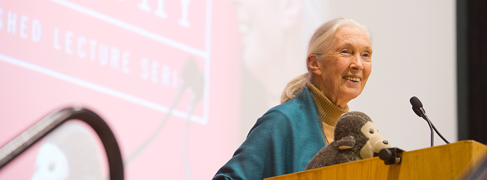 Dr. Jane Goodall lectures at UWinnipeg